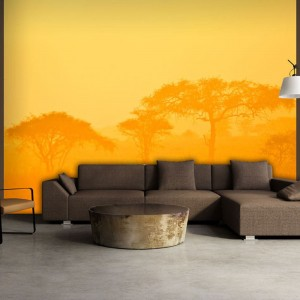 Fototapeta - Orange savanna
