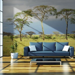 Fototapeta - Savanna trees